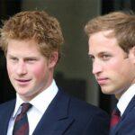 princove