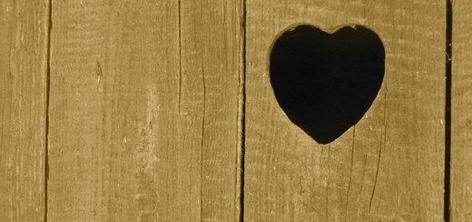 heart-843385_640