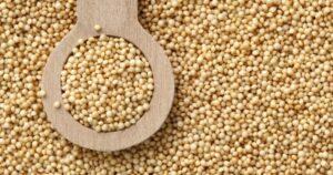 семена от амарант